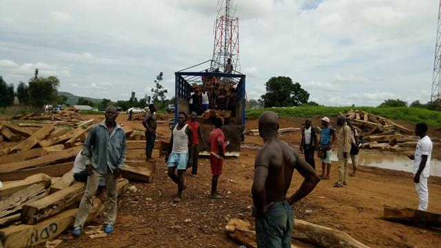 Loading of rosewood in Garba Chede, Taraba State